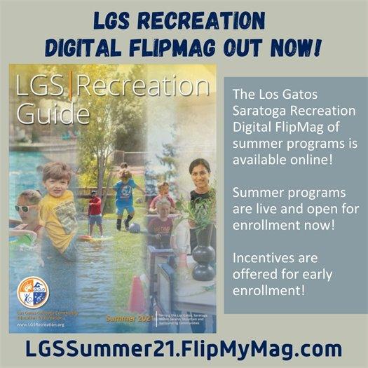LGS Recreation FlipMag