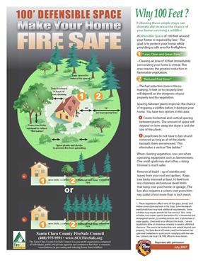 Wildfire Information Flyer