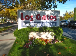 LG Shopping Center Sign.JPG