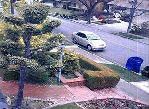 Surveillance Photo Web.jpg