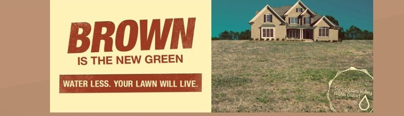 Drought 2014-brown green