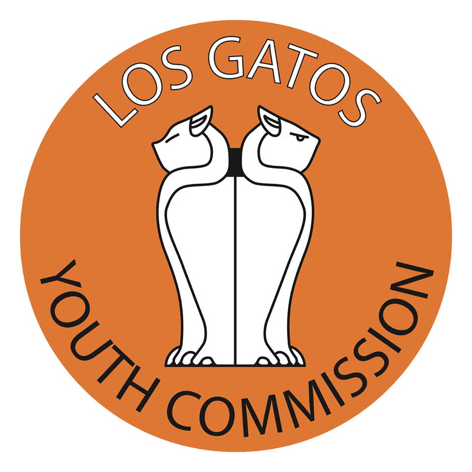 lg youth commission
