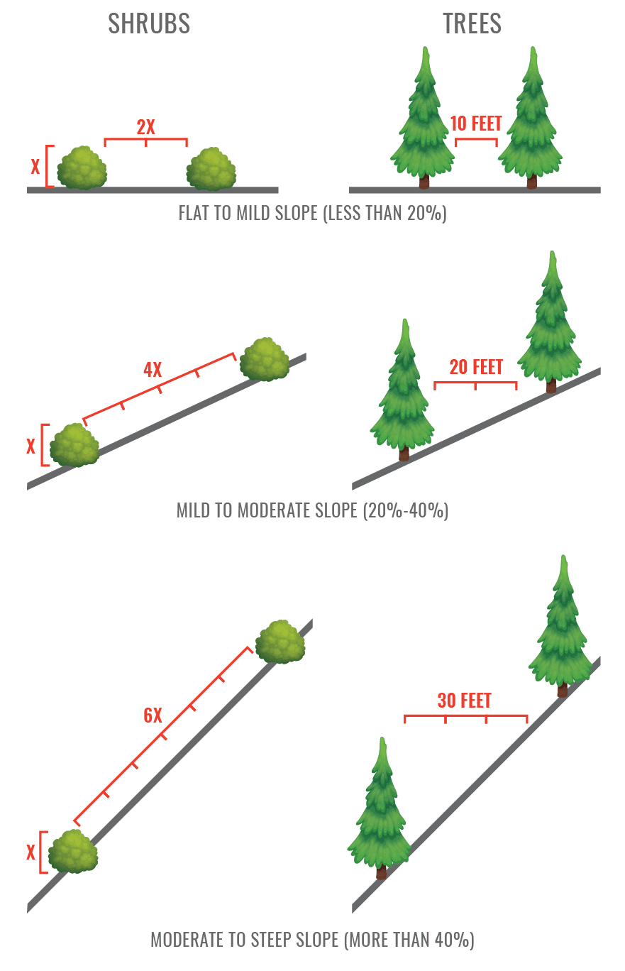 Graphic of distance needed between shrubs and trees based on slope